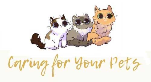 Pets and Us
